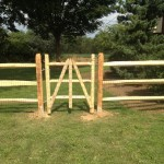 3-rail split rail fence with gate